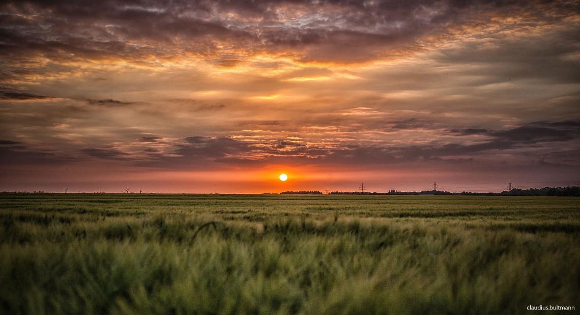Sonnenuntergang auf der Nette